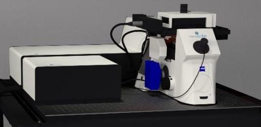 elektronenmikroskop.jpg